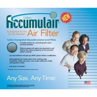 20x20x1 Payne Air Purifier Carbon Filters
